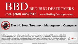 BedBugDestroyers.11.19
