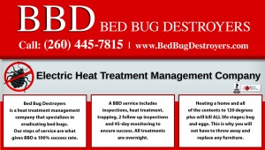 BedBugDestroyers.6.20